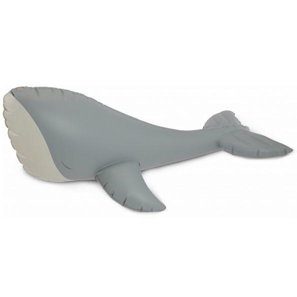 shellwhale